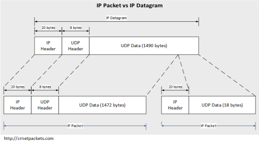 IP Packet vs IP Datagram
