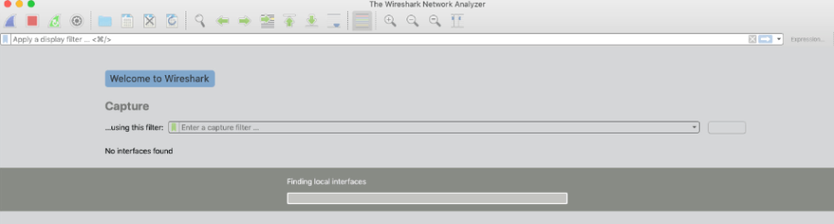 Wireshark Startup Finding Interfaces